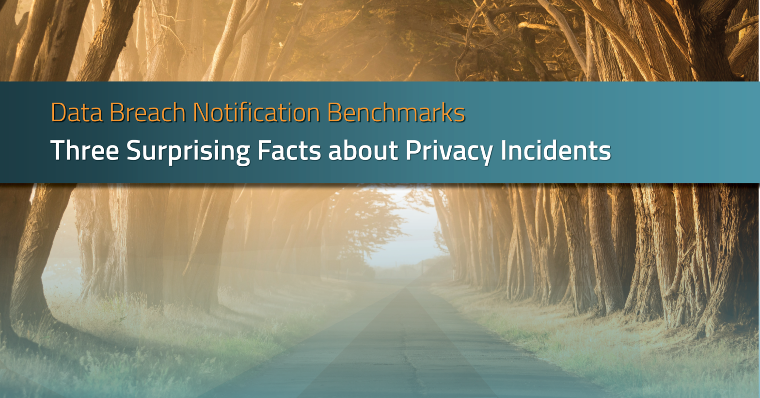 Three Surprising Facts about Privacy Incidents | RadarFirst